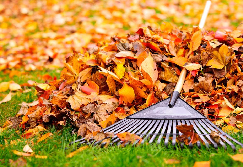 Environmental Property Management